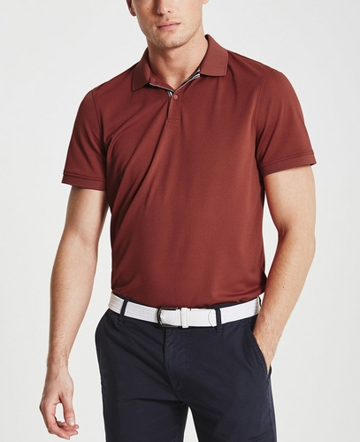 The Berrian Polo
