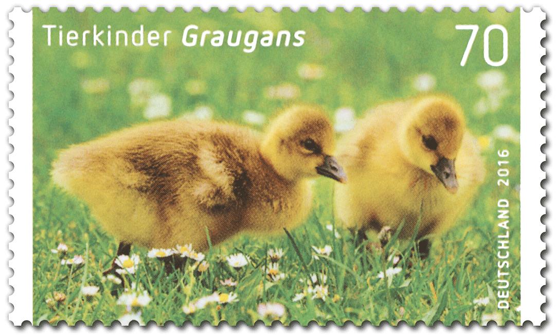 Briefmarke Graugans