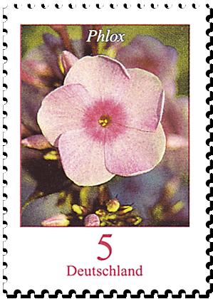 """Dauerserie """"Blumen"""" Flammenblume Phlox"""