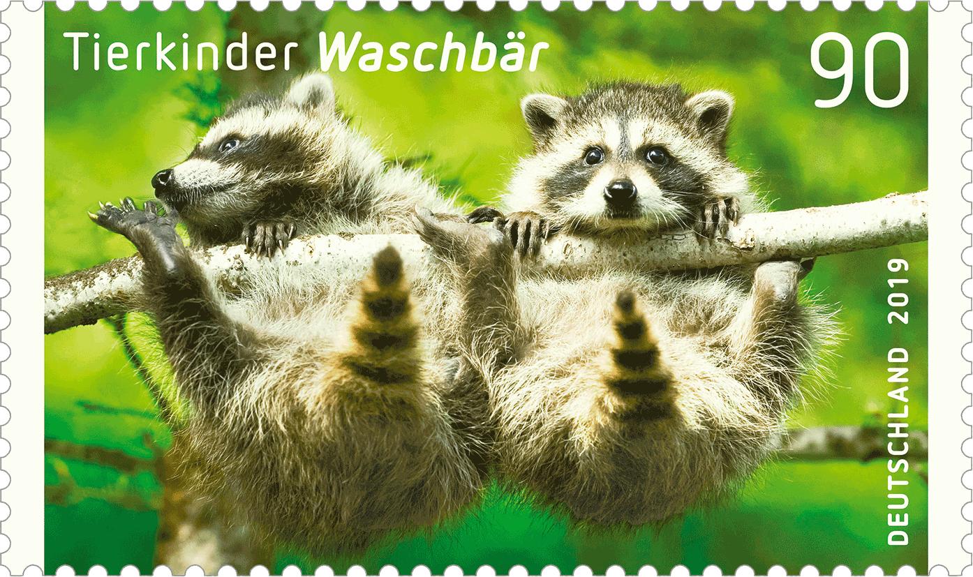 https://www.borek.de/briefmarke-waschbaer