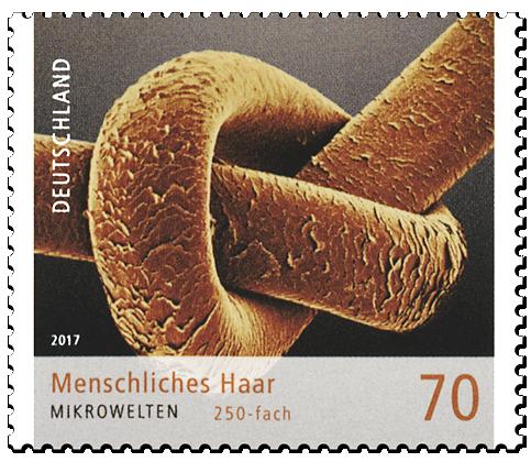 """Briefmarken-Serie """"Mikrowelten"""" Menschliches Haar"""