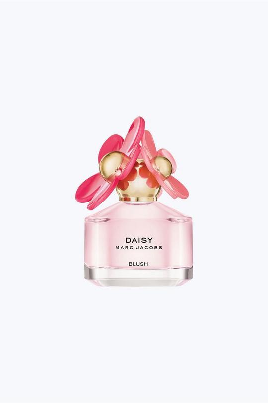 Daisy Blush Edition