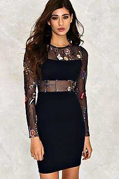 Embroidered Mesh Panel Dress