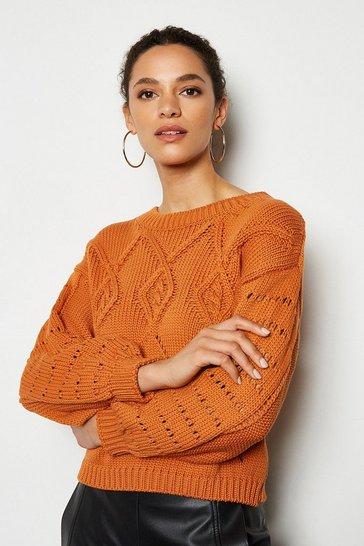 Rust Cotton Mix Capsule Knit Jumper