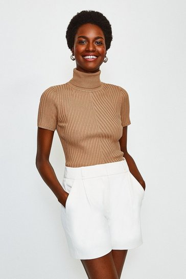 Camel Roll Neck Rib Knitted Top