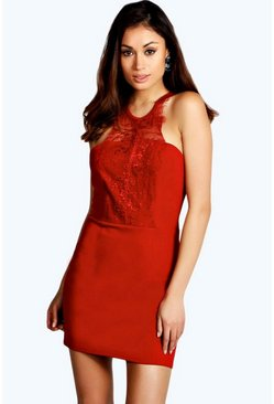 Rosie Eyelash Lace Neckline Bodycon Dress