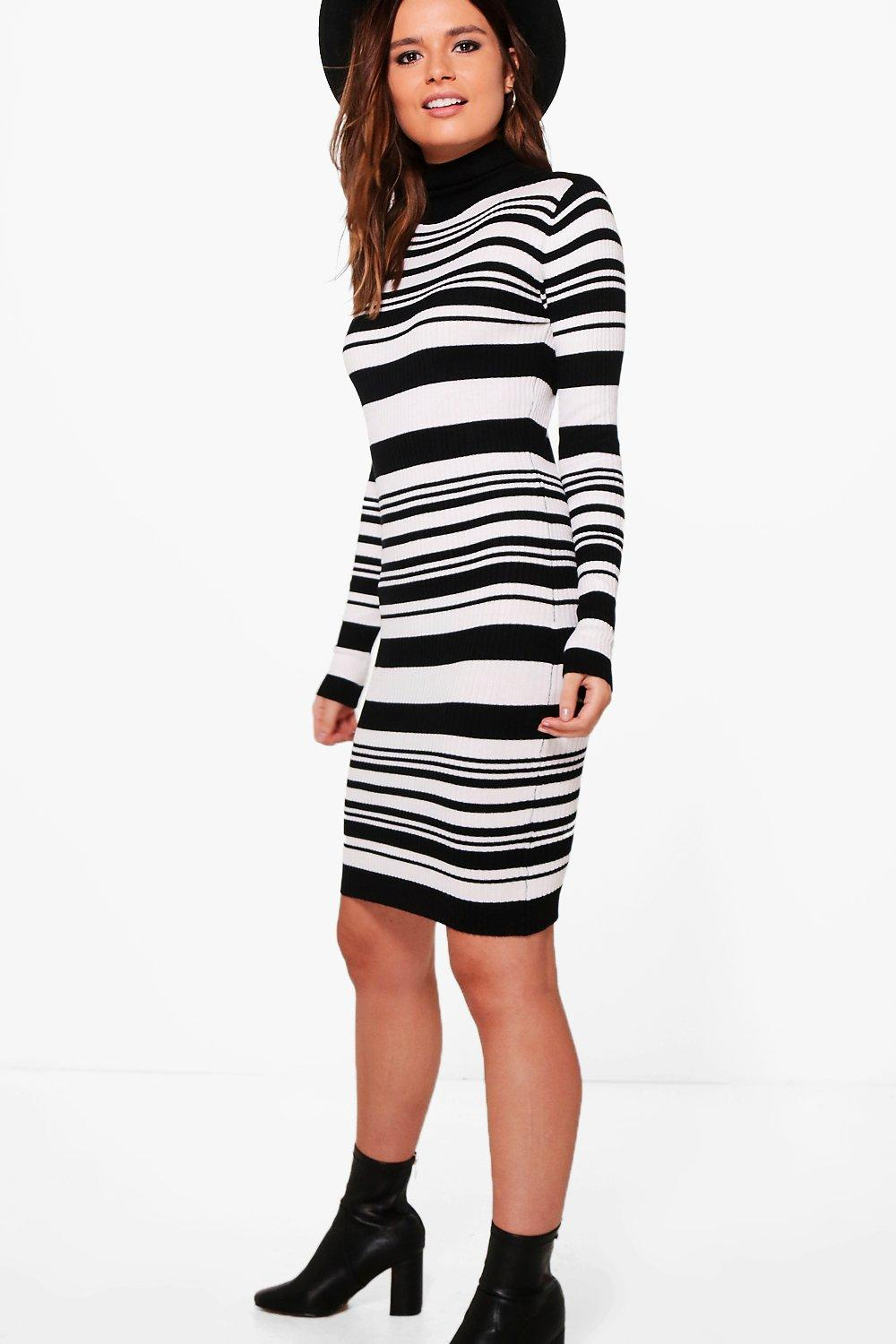 Striped Roll Neck Knitted Dress  multi