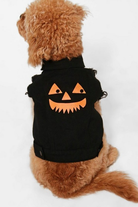Sabrina Halloween Pumpkin Dog Denim Jacket