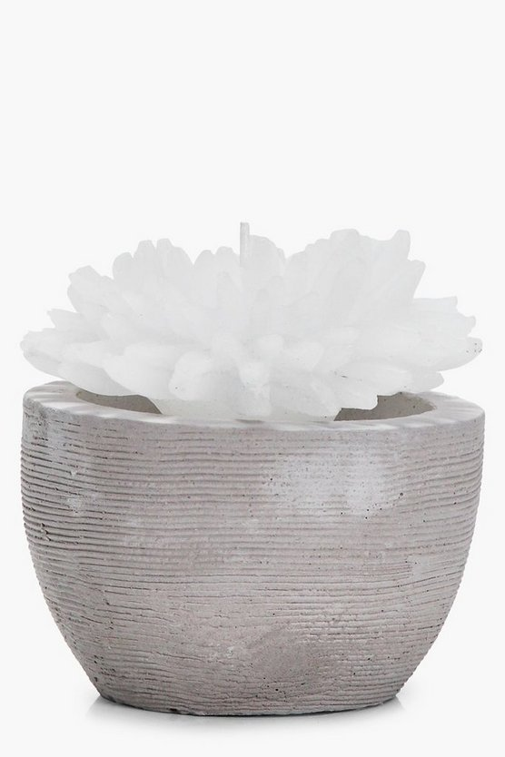 Flower Candle In Ceramic Pot