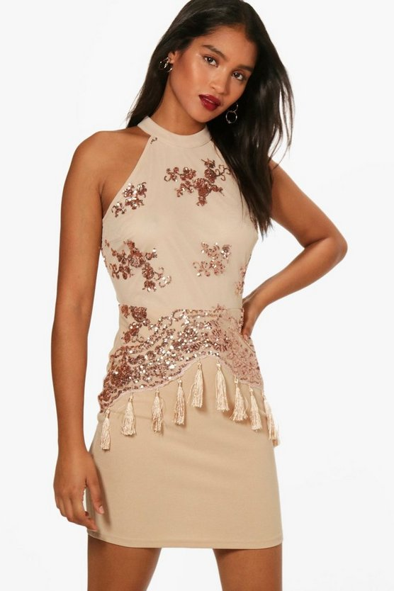 Boutique Sequin and Tassel Bodycon Dress