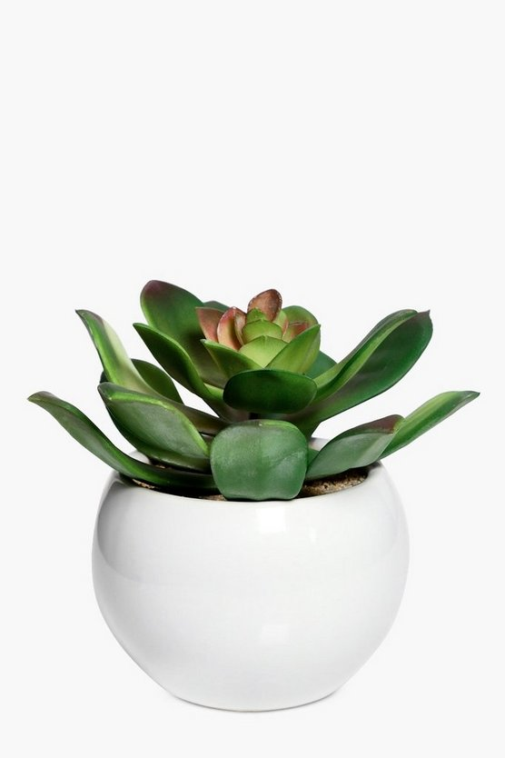 Faux Cactus in Ceramic Plant Pot