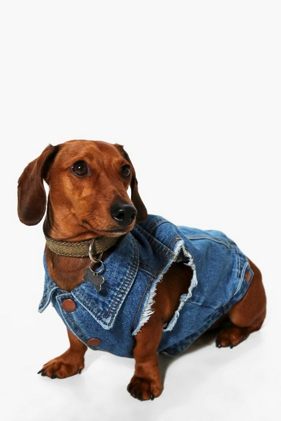 Reggie Dog Denim Jacket