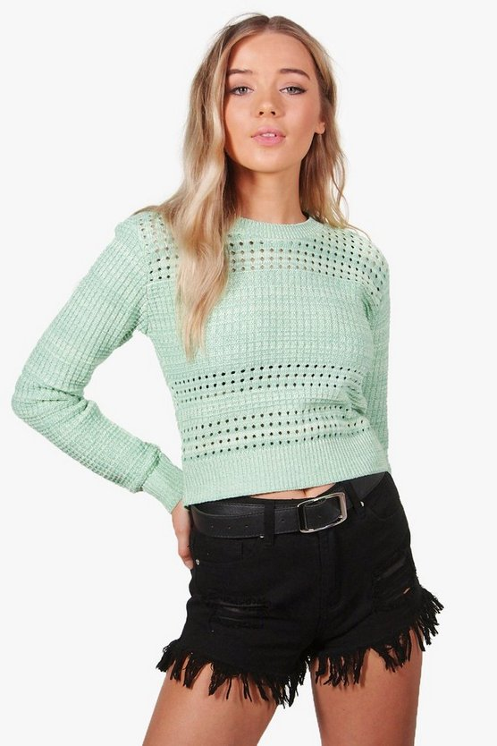 Coleen Crochet Knit Cropped Top