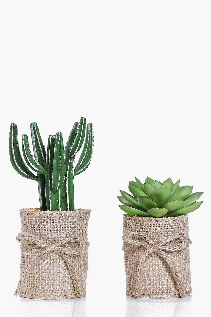 2 Hessian Wrap Faux Cactus & Aloe Plants