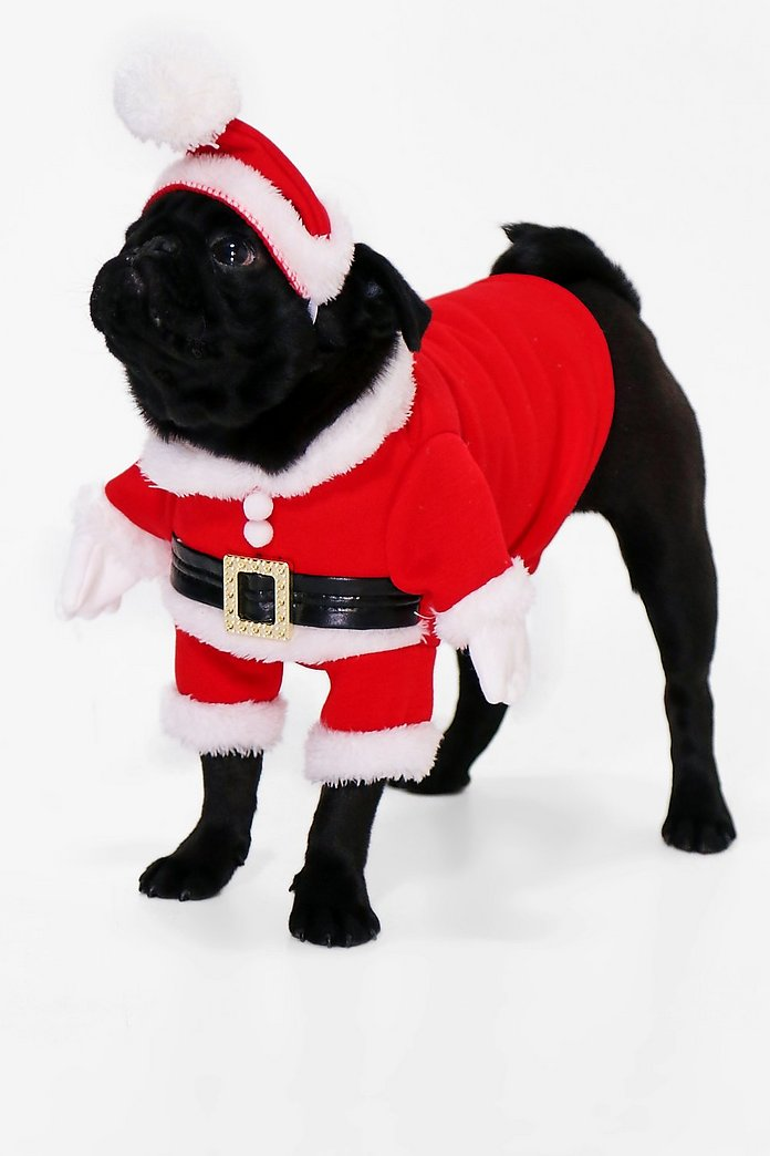 Novelty Christmas Dog Outfit & Hat