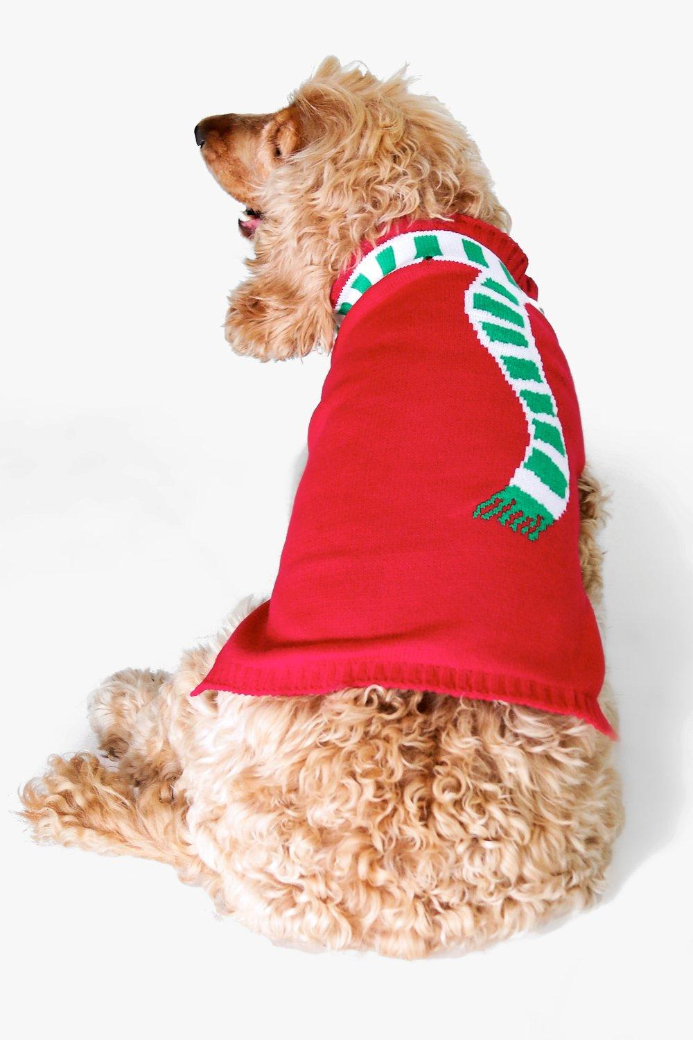Clara Scarf Christmas Dog Jumper