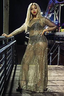 Jordyn Metallic Lace Maxi Dress