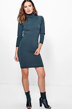 Lexi Turtle Neck Fine Knit Mini Dress