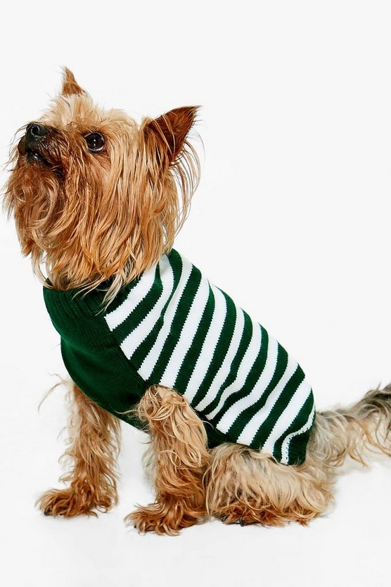Poppy Stripe Dog Christmas Jumper