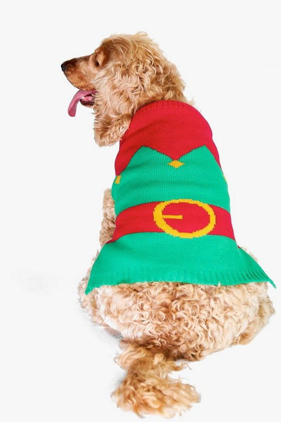 Evie Elf Suit Dog Christmas Jumper