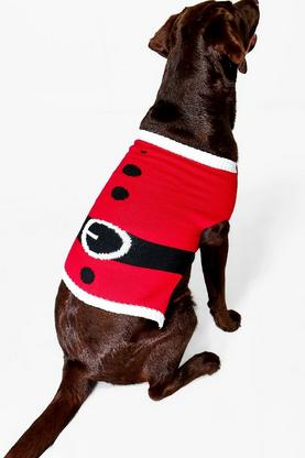 Ava Father Christmas Suit Dog Jumper