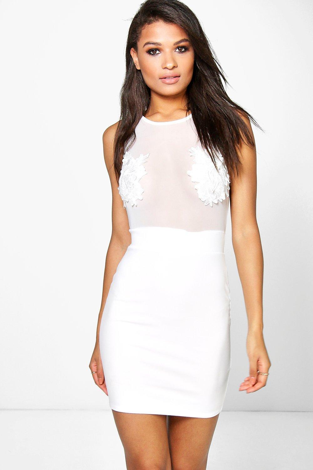 Lisa Lace Panel Mesh Bodycon Dress