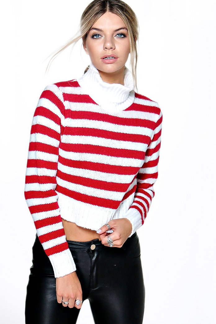 Nicole Stripe Turtle Neck Crop Jumper