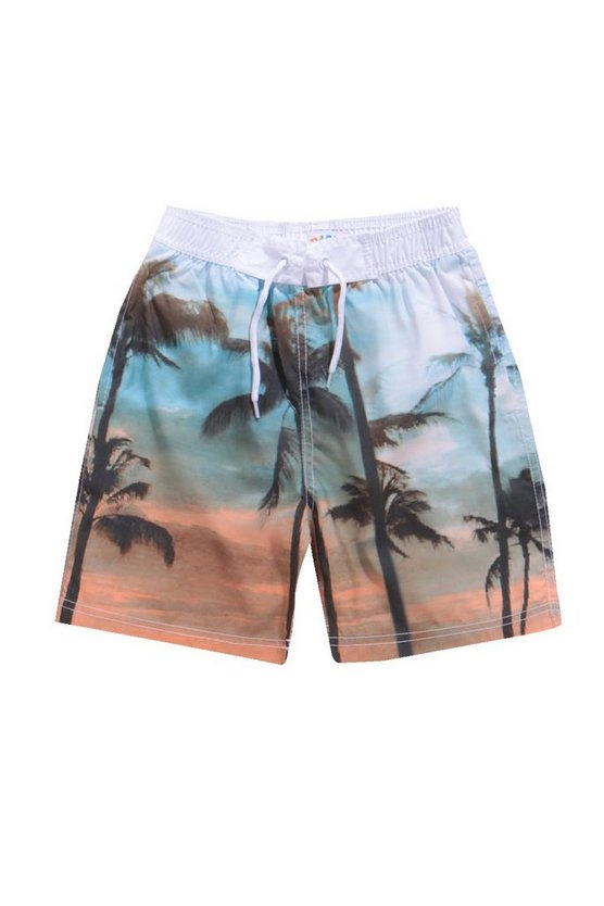 Boys Palm Print Swim Shorts