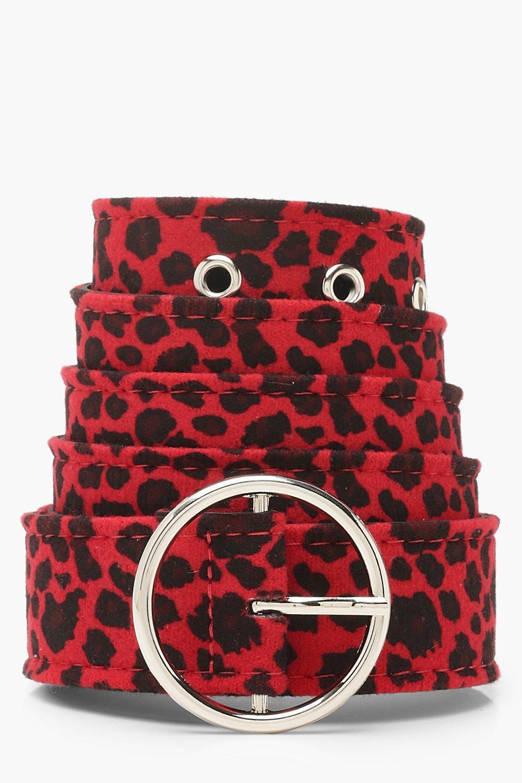 Купить Аксессуары, Плюс сайз - ремень с леопардовым принтом O-Ring, boohoo