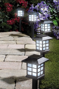 Pack Of 10 Lantern Solar Lights