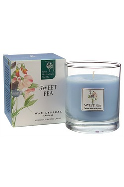 Wax Lyrical Large Wax Filled Jar 42hr Burn - Sweet Pea