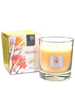 Wax Lyrical Large Wax Filled 42hr Burn Freesia