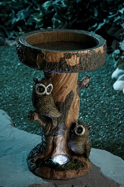 Owl Bird Bath With Solar Light