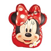 Minnie Mouse Secret Diary