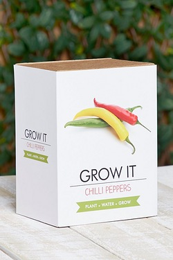 Grow It - Chilli Plants