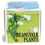 Sow & Grow - Beanstalk Plants