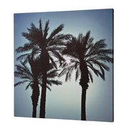 Palm Tree Canvas