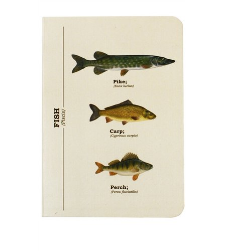 Image for Fish A6 Notebook from ace