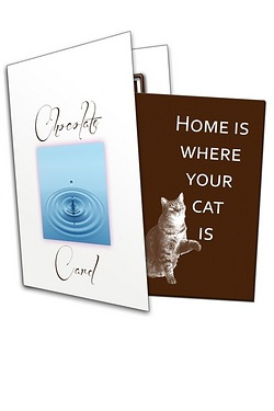 Home Is Where Your Cat Is Chocolate...
