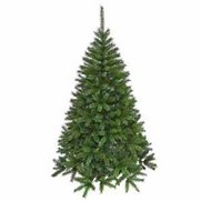 Green Fir Christmas Tree