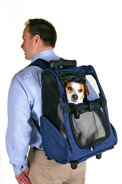 Pet Car Seat/Backpack/Trolley