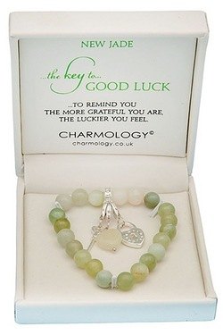 Charmology The Key To Good Luck New...