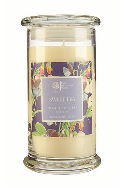 Royal Horticultural Society Sweet Pea Extra Large Jar Candle