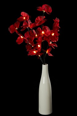 LED Red Orchid With Vase