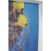 Tropical Fish Photo Print Roller Bl...