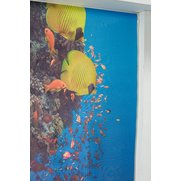 Tropical Fish Photo Print Roller Blind