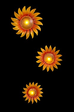 Set Of 3 Sunflower Wall Plaques