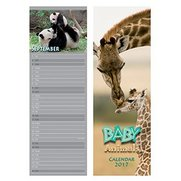Large Slim Baby Animals Calendar 2017