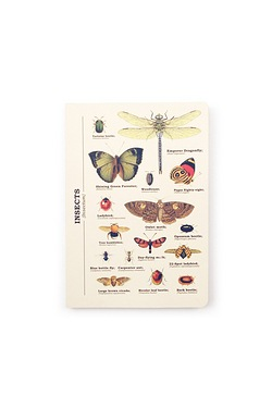 Insects Notebook