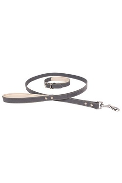 Banbury and Co Luxury Dog Collar an...